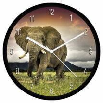 Elefánt falióra - számos