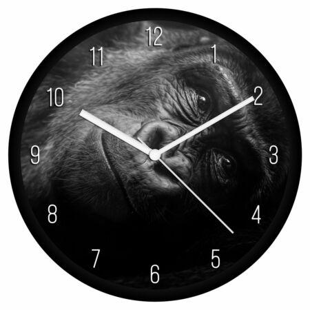 Gorilla bébi falióra