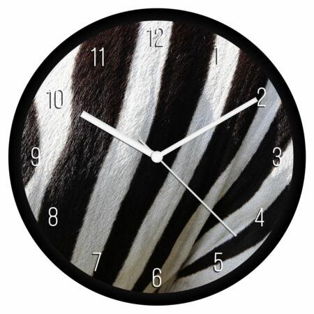 Zebra minta falióra
